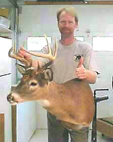 Ohio whitetail mounted on one of the REAL DEER taxidermy forms.